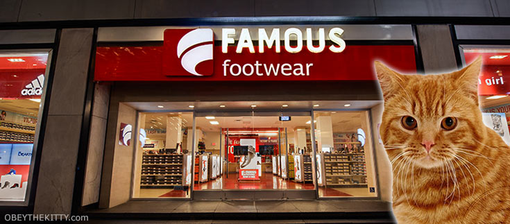 famous footwear promo codes cat